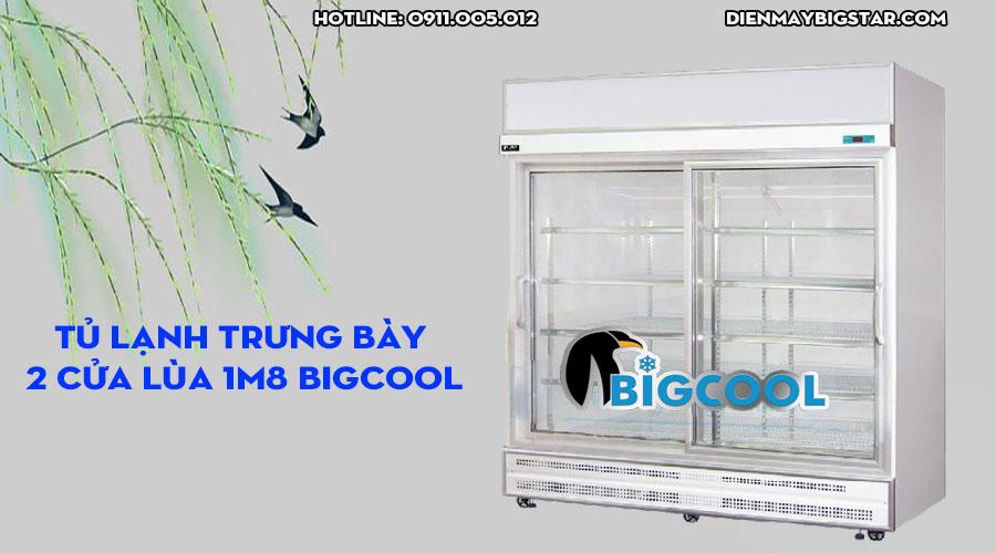 tủ lạnh trưng bày bigcool